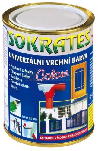 Акрилна боя на водна основа Sokrates