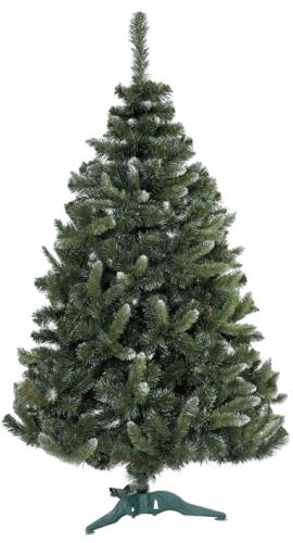 Класически бор с бял връх 80 - 250 см