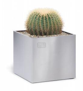 Метална саксия Blomus Greens Cube 30 х 30 х 30 см