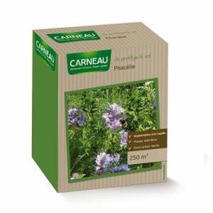 Медоносна цветна поляна - семена на Фацелия Carneau 520 гр