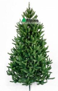 Коледна елха Alpina Натурален Смърч 120 - 180 см