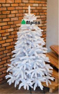 Коледна елха Alpina Бял Смърч 120 - 250 см