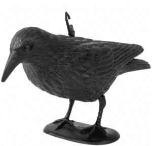 Плашило за дребни птици