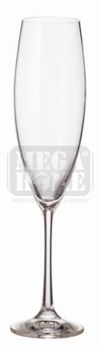 Чаши за шампанско Bohemia Royal Noza 6 броя 240 ml